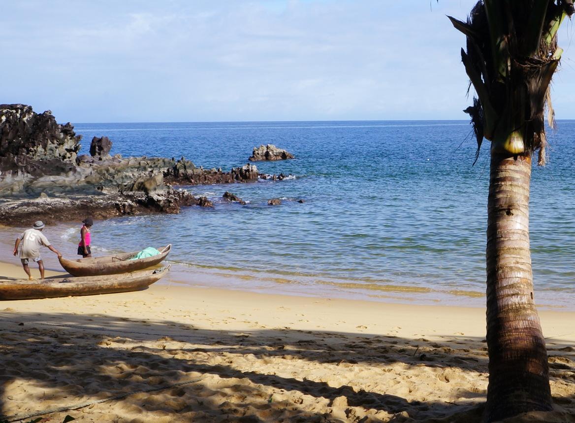 Masoala - coconut tree seller and wife