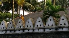 Kandy - Monk