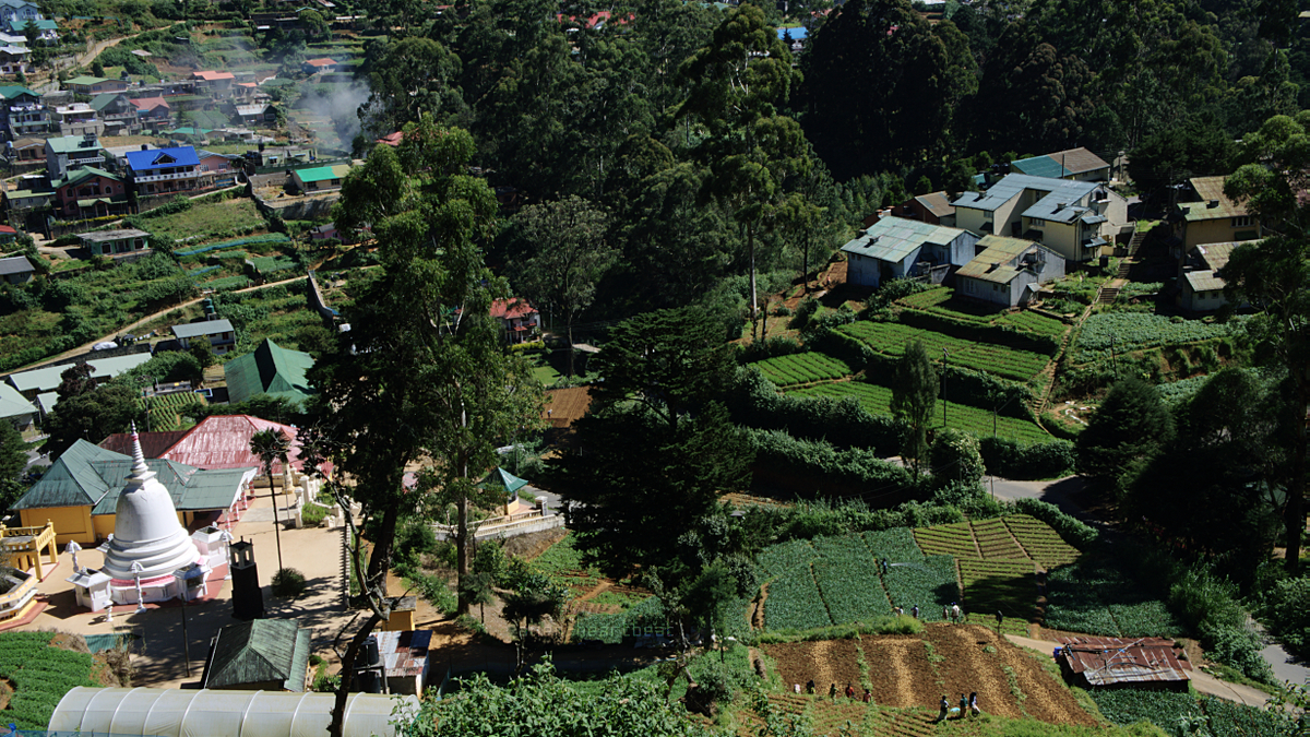 Nuwara Eliya - View of Stupa from above