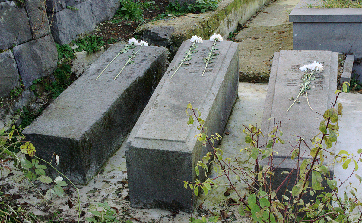 Armenian Genocide - graves of three members of a family who died
