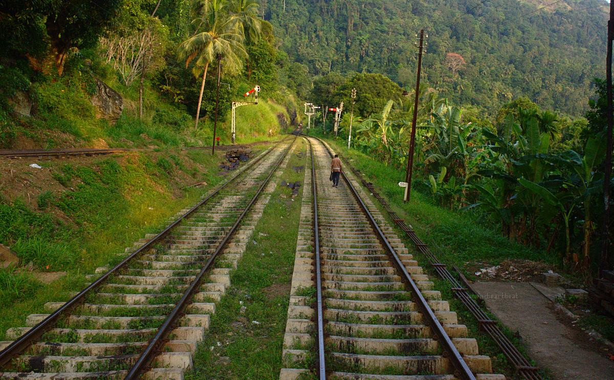 Sri Lanka: Man Walking Home on Railway Tracks