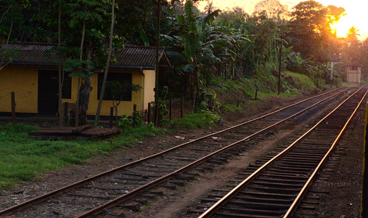 Sri Lanka: Sunset on Warm Tracks