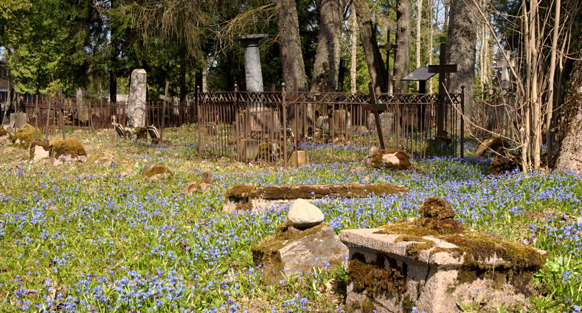 Estonia, Paide - Reopalu Cemetery - flowers, fence