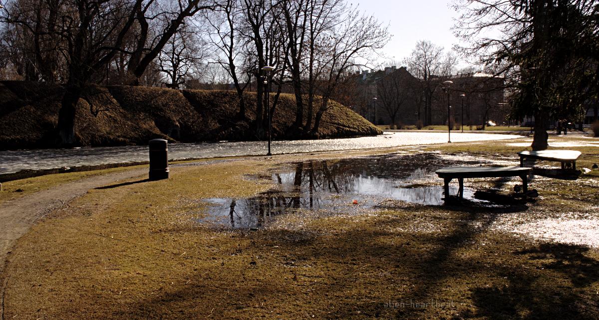 Tallinn - Spring - Icy Stream