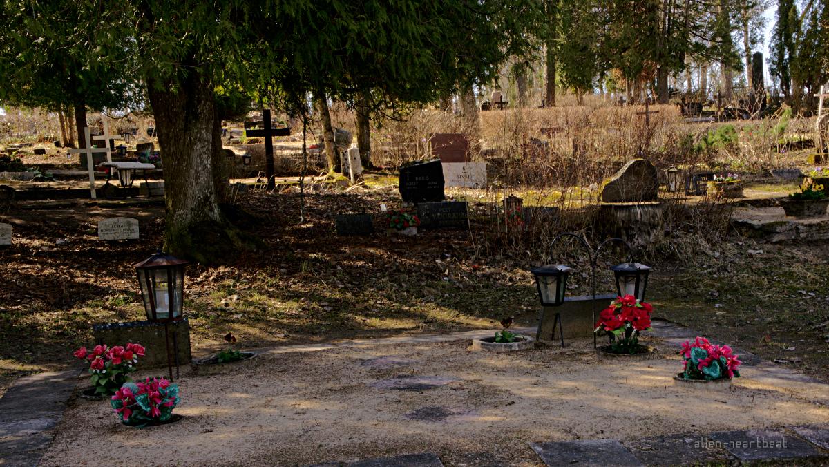 Estonia, Suure-Jaani: Graves with Flowers