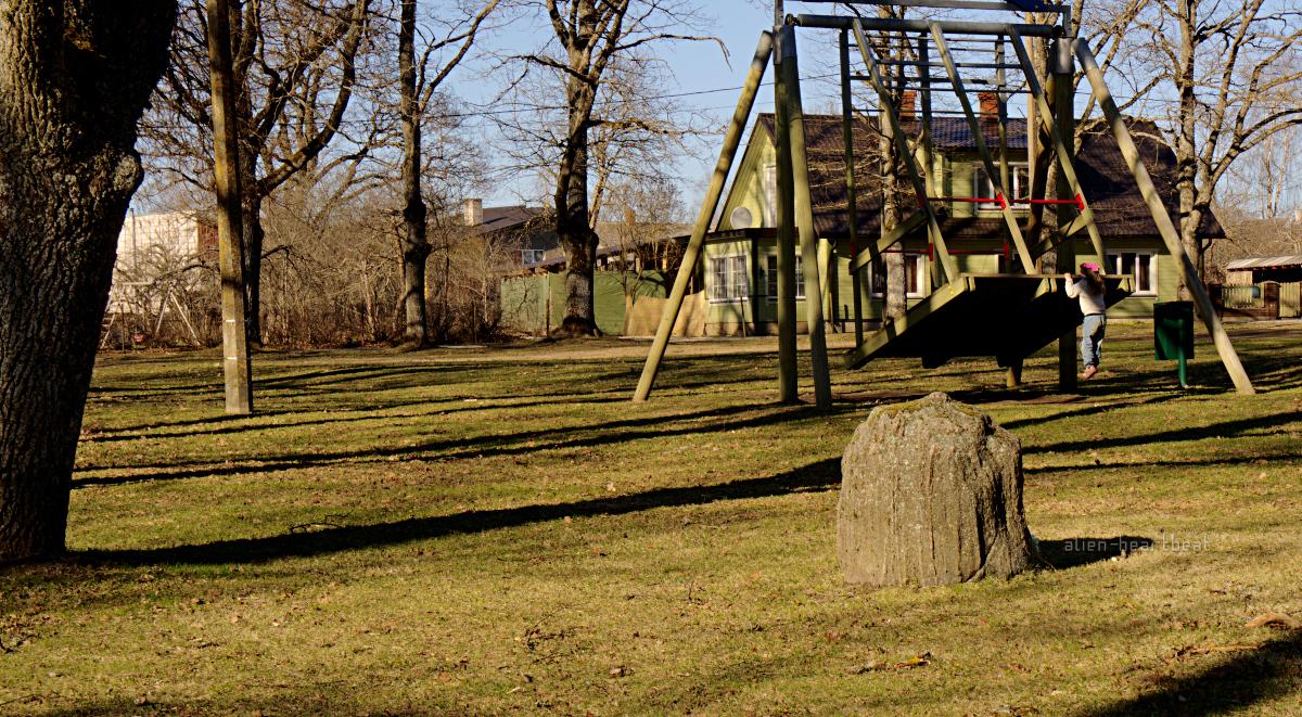 Estonia, Suure-Jaani: Child on Swing