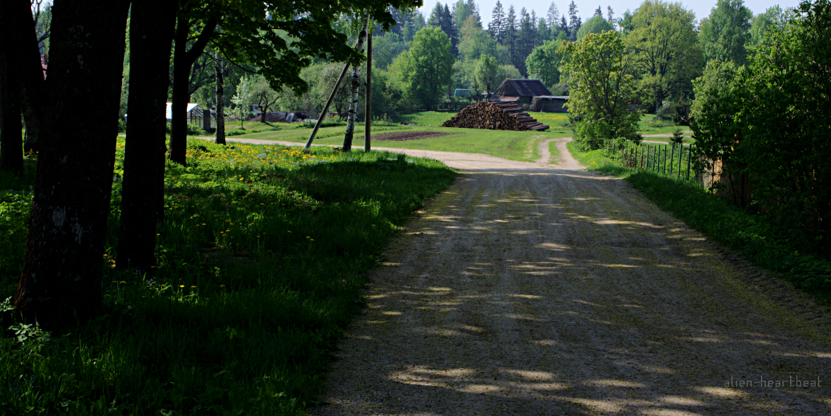 Estonia - Road to Otepaa - Puka Hamlet