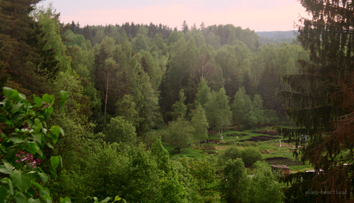Estonia - Otepää - forest - farm